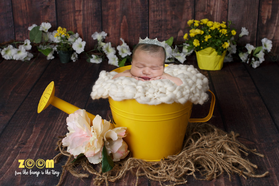 Best Maternity New Born Photographers Pearland